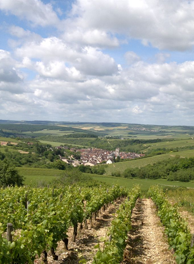Paysages yonne - Chambre agriculture yonne ...