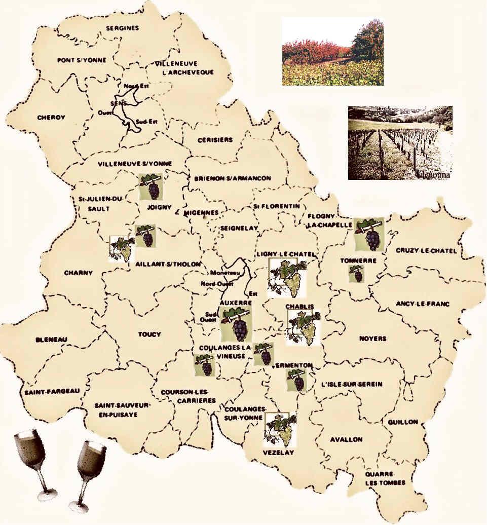 Carte Vin Bourgogne Blanc.La Carte Des Vins De L Yonne